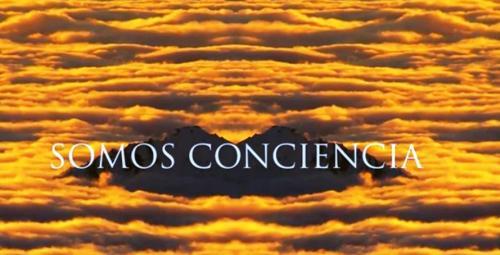 somos conciencia