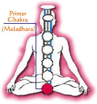 primer_chakra_muladhara[2]