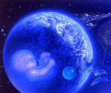 1b34d-tierra-delfines-bebe