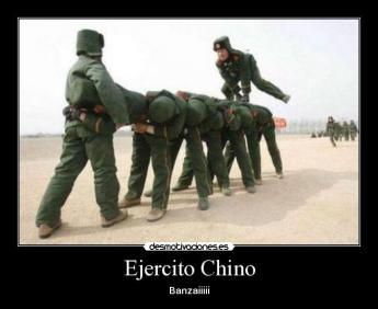 chinosaburridos