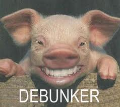 Desinformación/Debunkers Descarga