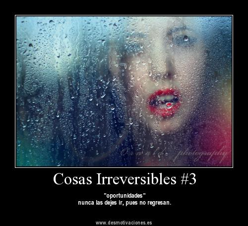 things_irreversible_by_amy291000-d5d56co