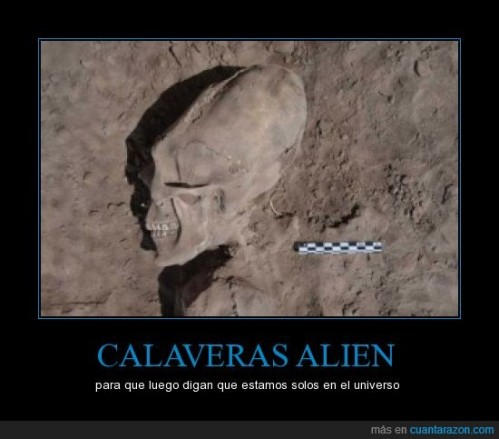 CR_777473_calaveras_alien