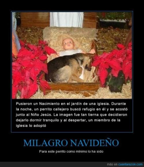 CR_878076_milagro_navidentildeo