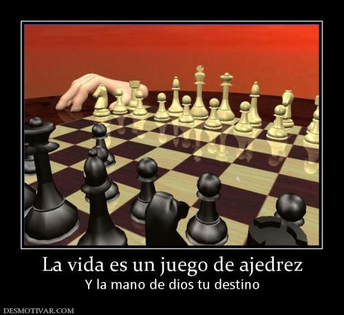 15615_la_vida_es_un_juego_de_ajedrez