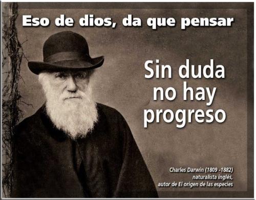 sin duda no hay progreso