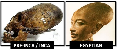 egyptian-inca-elongated-skulls