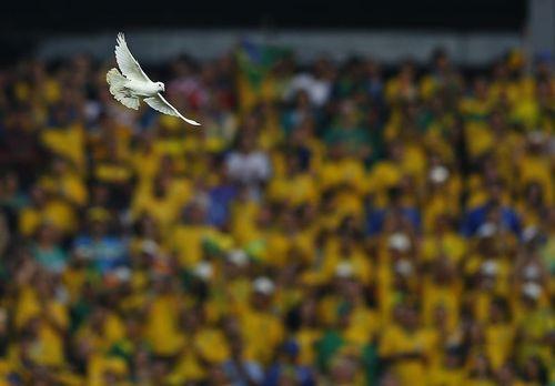 Una paloma sobrevuela el estadio de Sao Paulo tras ser liberada en la ceremonia de inaguración del Mundial de la FIFA en Sao Paulo