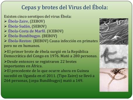 ebola-4-638