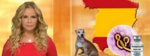 La-RTL-alemana-muestra-un-mapa_54417865688_51351706917_600_226