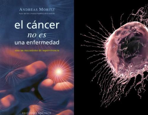 el-cancer-no-es-una-enfermedad