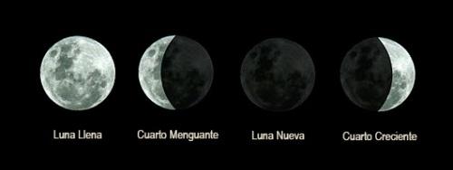 Fases_de_la_luna001(530px)