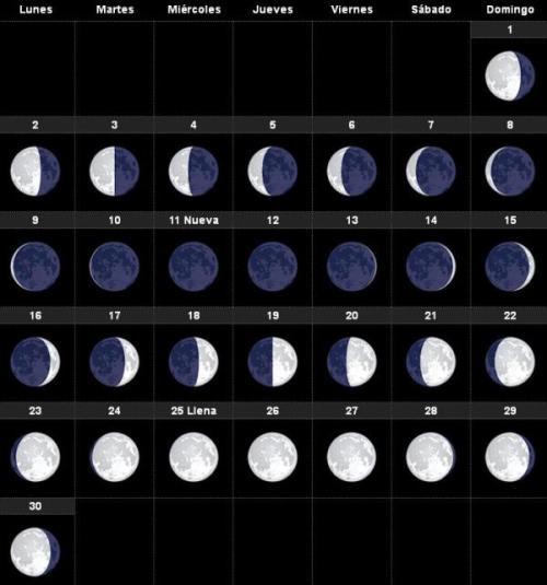 calendario-lunar-2015-noviembre-600x642