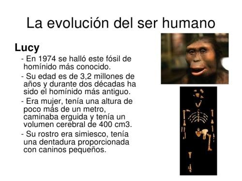 la-evolucin-del-hombre-10-728
