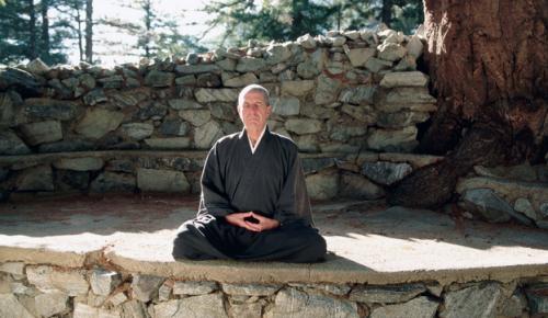 cohen-meditando