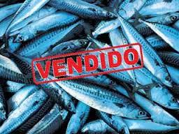 todo-el-pescado-vendido