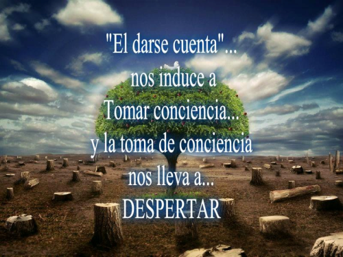 despertar-consciencia