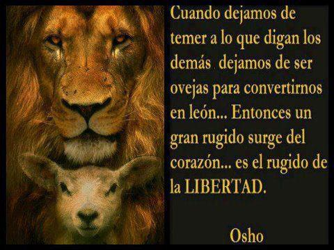 leon-ovejas-libertad